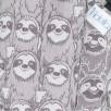 Fidella Fusion Sunday Sloth Gris et Brun taille Bambin