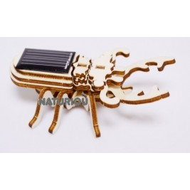 Mock-up of a beetle solar Héliobil