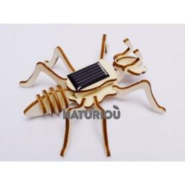 Model ant solar Héliobil