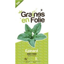 Epinard géant d'hiver Bio graines en folie